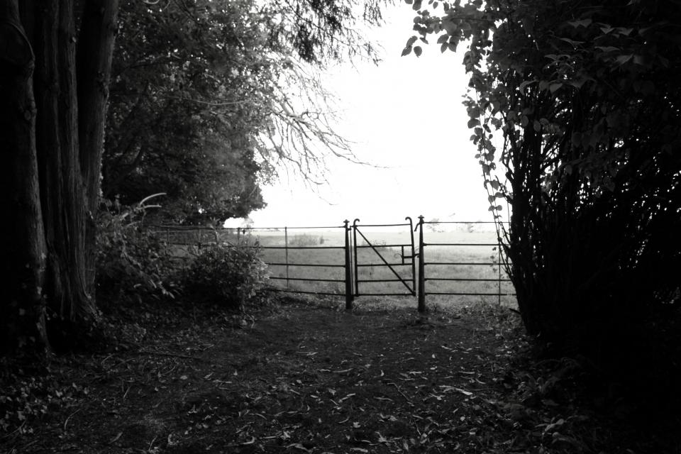 Old gate at the top of the drive looking into top field