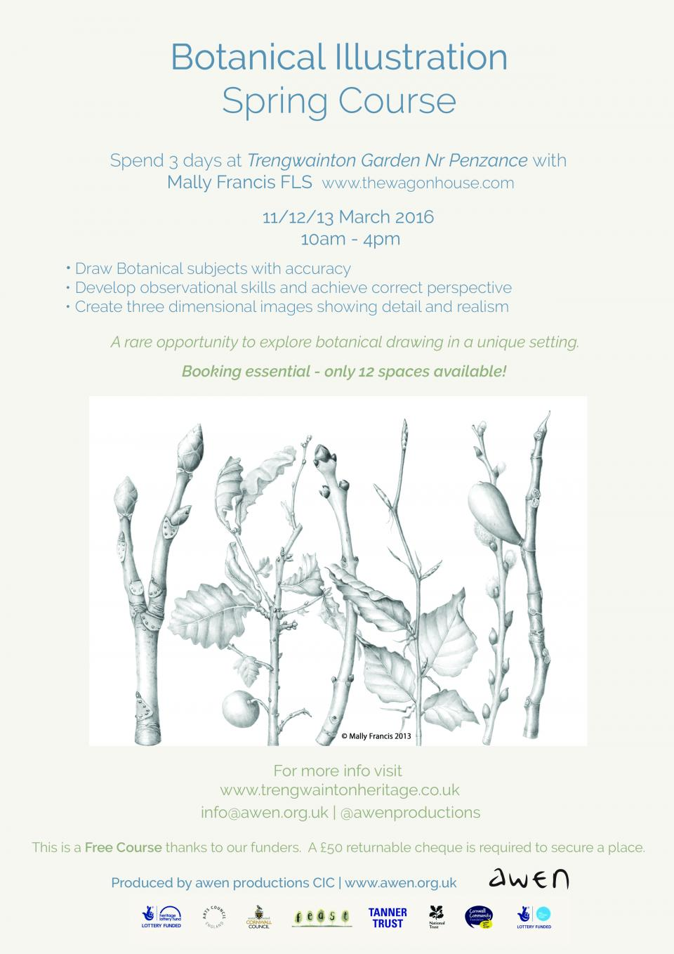 Botanical illustration Spring course