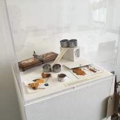 Home of Springs, Trengwainton exhibition