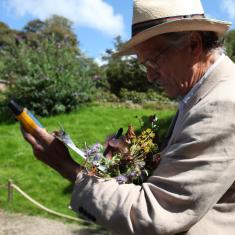 Keith Spurgin collecting specimens. Trengwainton Garden