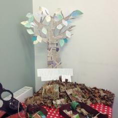 Mounts Bay Trengwainton tree of history